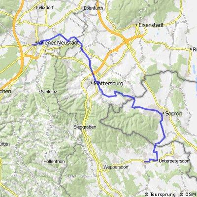 WrNeustadt-Horitschon - Plan