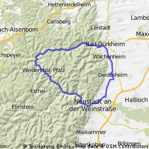 Deidesheimer RTF des RV Edelweiss 1924 Deidesheim e.V. - 48 km Strecke