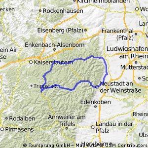 Deidesheimer RTF des RV Edelweiss 1924 Deidesheim e.V. - 81 km Strecke
