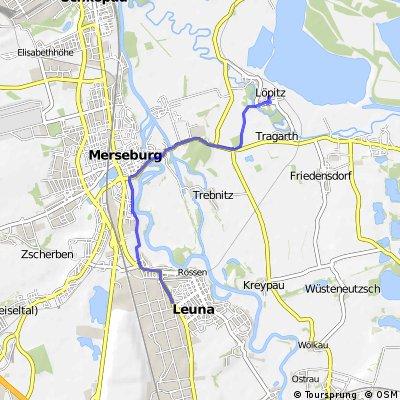 Arbeitsroute (Luppenau-Leuna)