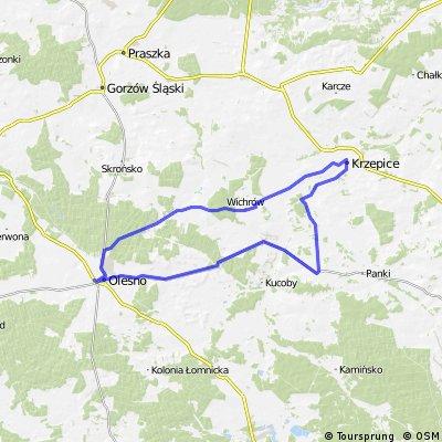 Olesno - Radłów - Krzepice - Przystajń - Olesno