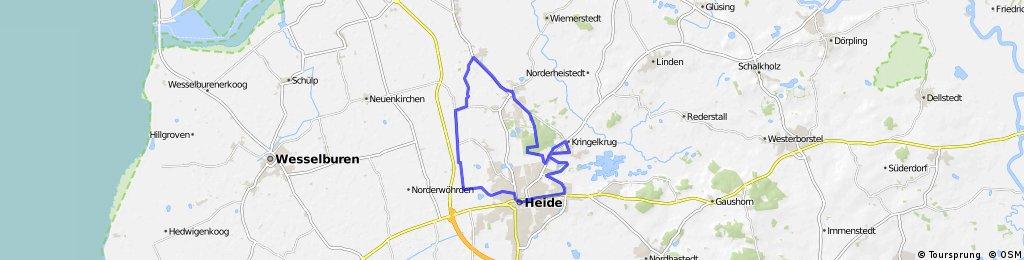 Steller Burg-Heide