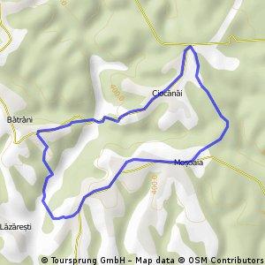 Moșoaia-Ciocănăi (2012-07)