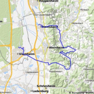 Radstrecke Viernheimer Triathlon 2012