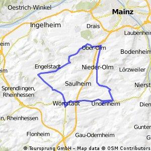 2009_1 Rheinhessen-Kleeblatt-Marathon