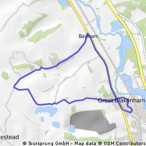 Rich 5 Mile Run 2