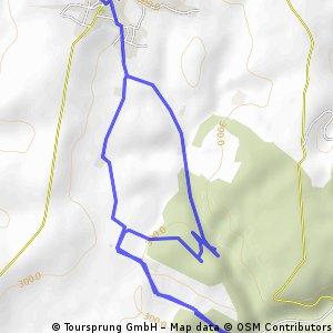 Bininger Wald 1