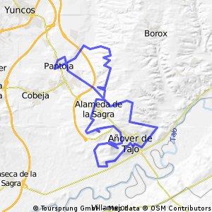 Sacacorchos 2011