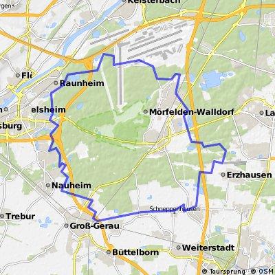 Worfelden - GG-Niederwaldsee - RÜ-Haßloch - Raunheim - Flughafen - Gundhof - Mörfelden (Montescherbelino) - Egelsbach (Flughafen) - Gräfenhausen - Worfelden