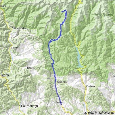 Suici - Salatrucu - Drum forestier spre Vf Negoiu