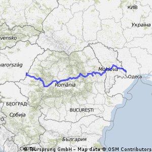 oliveraie 2 bis Roumanie Moldavie