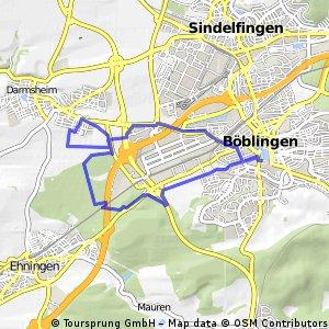Dagersheim mit Drehwurm