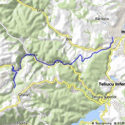 Calea ferată minieră ardeleană - Erdélyi bányavasút - Transylvanian mining railway