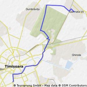 Timisoara-Giarmata Vii (prin Padurea Verde)