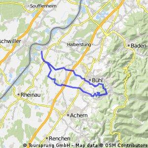 Rheinmünster - Burg Windeck 10.1.13