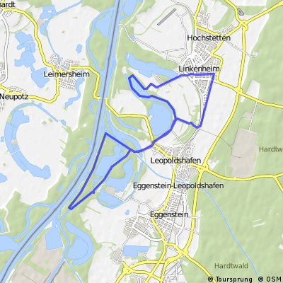 Linkenheim-Leo-Pfinzentlastungskanäle-BaLi-Linkenheim