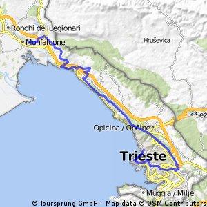 Costa Triestina