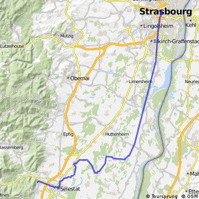 Strasbourg Chatenois