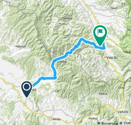 Aventuri pe bicicleta : Sebis - Moneasa - Stei