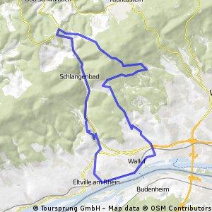 Eltville -> Frauenstein -> Hohe Wurzel -> Rauenthal