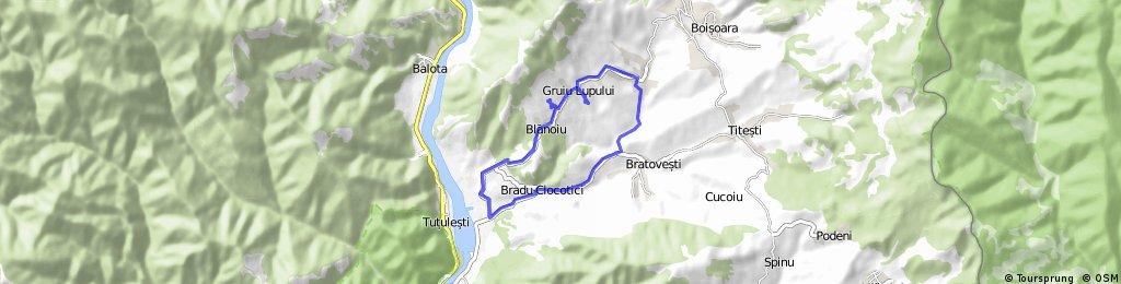 T58: RACOVITA-Gruiu Lupului-Blanoiu-VC
