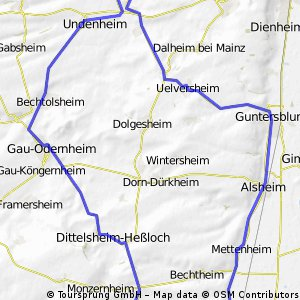 südl. rheinhessisches Hügelland und Rheinebene