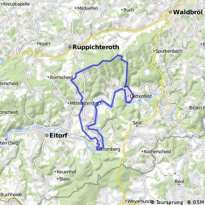 Buchenweg Hohes Wäldchen Römerstr Stromberg Buchenweg