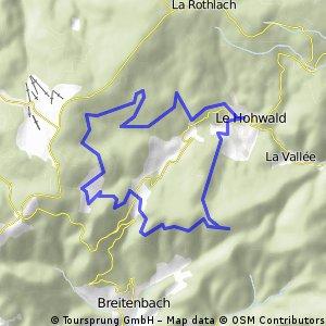 Bellevue-Trail_LeHohwald-glberPunkt