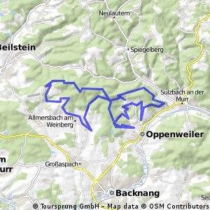 MTB Schwäbischer Wald Nr.7 + Nr. 6