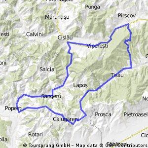 Valea Cricovului - Poiana Pinului