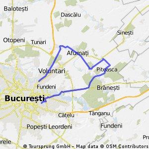 Voluntari-Stefanesti-Afumati-Ganeasa-Sindrilita-Cozieni-Pantelimon