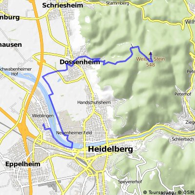 HD-Wieblingen nach Wilhelmsfeld, Weißer Stein