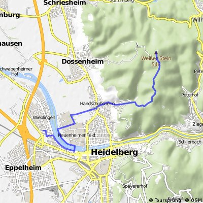 Vom Weissen Stein nach Handschuhsheim durch den Wald, danach durchs Neuenheimer Feld nach Wieblingen