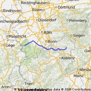 E1 Strauch - Dreifelden