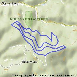 Weißer Stein, Gipfelrunde