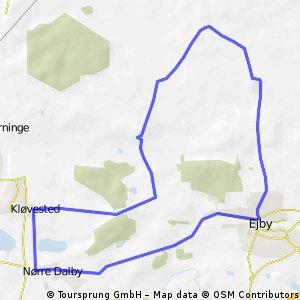 Tour de Ejby, linieløb 2009