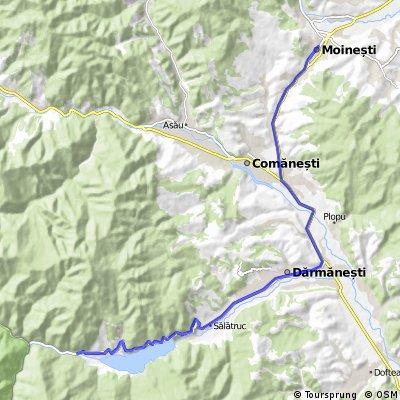 Moinesti - ValeaUzului (coada lac)