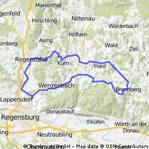 Brennberg 5.6.2013
