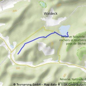 Hanauer zum Aussichtsfelsen nach Bellerstein