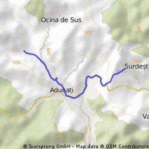 Surdesti - Ocina de Sus