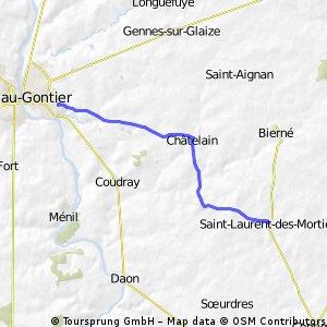 saint-laurent / Chiot