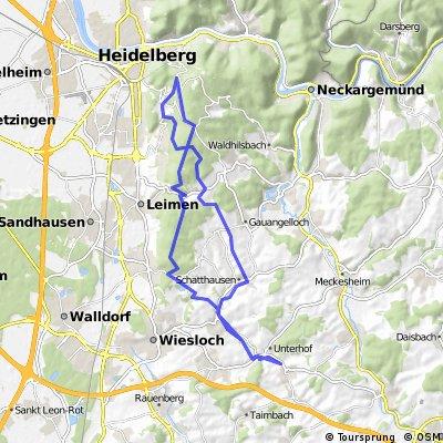 Trailrunde am Königstuhl