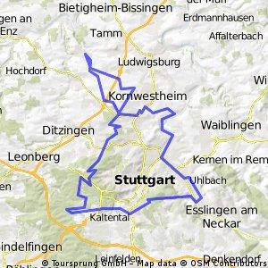 RADELTHON 88km-Teilstrecke von Markgröningen aus