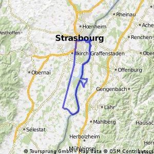 StrasbourgWHD