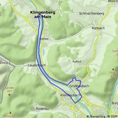2 Mainbrücken Halbmarathon