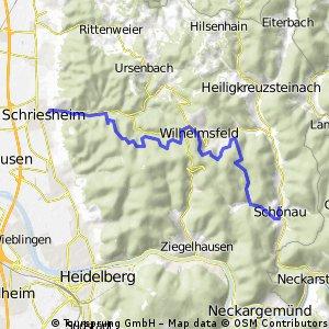 2013-07-12_Schönau-Schriese_rück_Wald