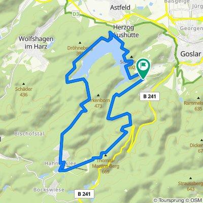 Harz - um die Granetalsprerre