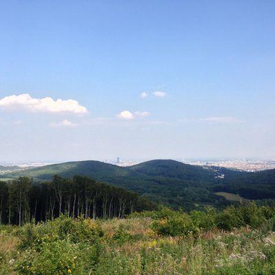 Jubiläumswarte Sophienalpe Höhenstrasse