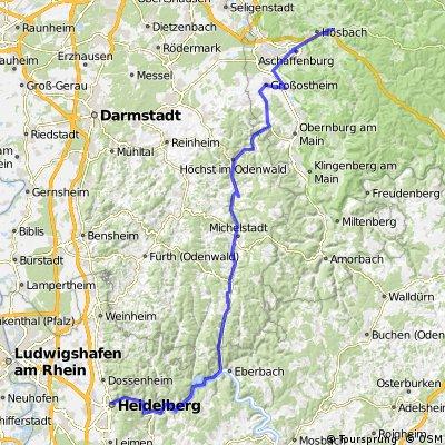 Rennradtour nach Heidelberg