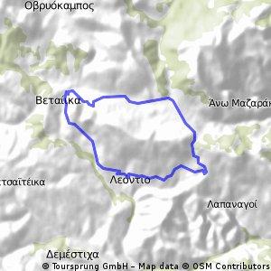 leontio - rakita-golemi-veteika-platanakia-leontio